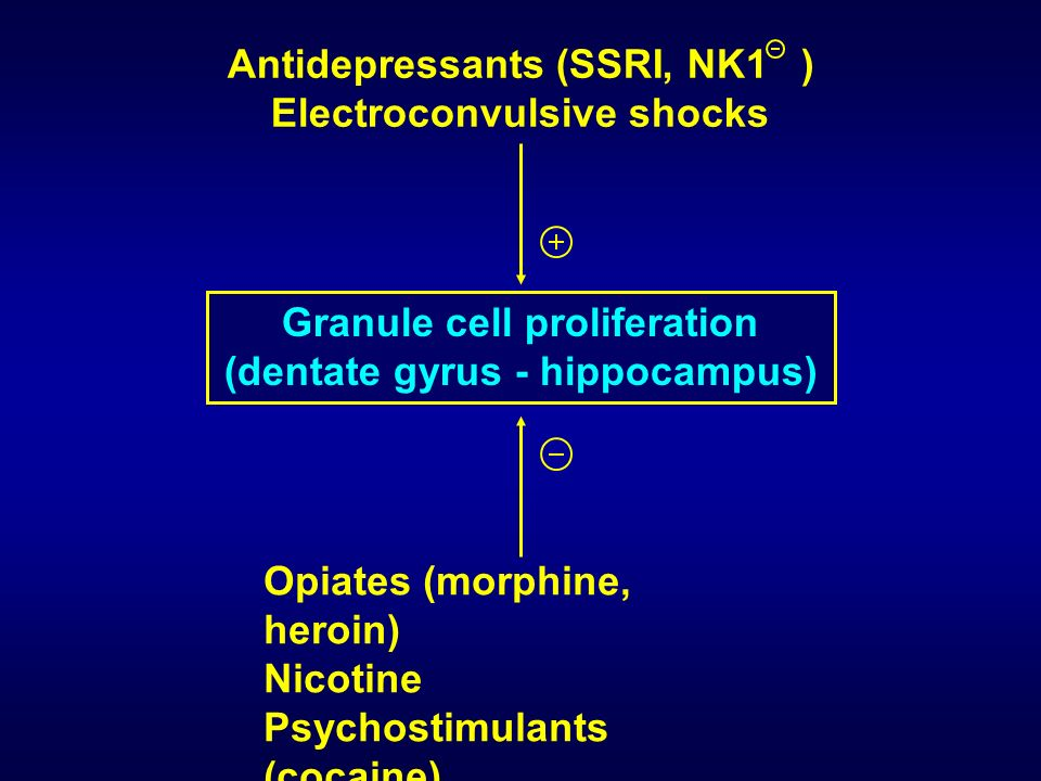 Antidepressants (SSRI, NK1 ) Electroconvulsive shocks