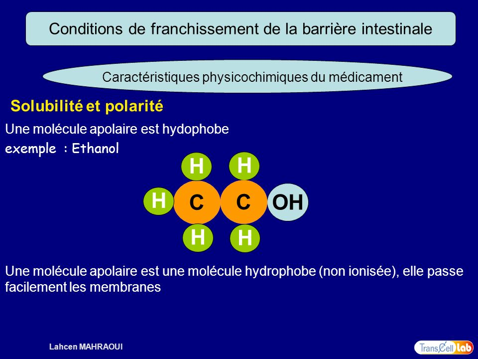 H C OH Conditions de franchissement de la barrière intestinale