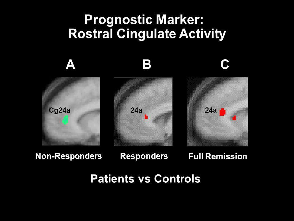 Rostral Cingulate Activity