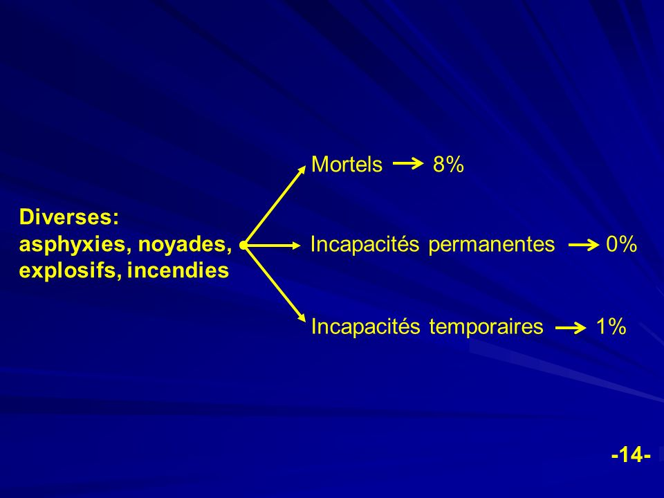 Mortels 8% Diverses: asphyxies, noyades, explosifs, incendies. Incapacités permanentes 0%
