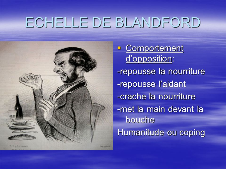 ECHELLE DE BLANDFORD Comportement d'opposition: