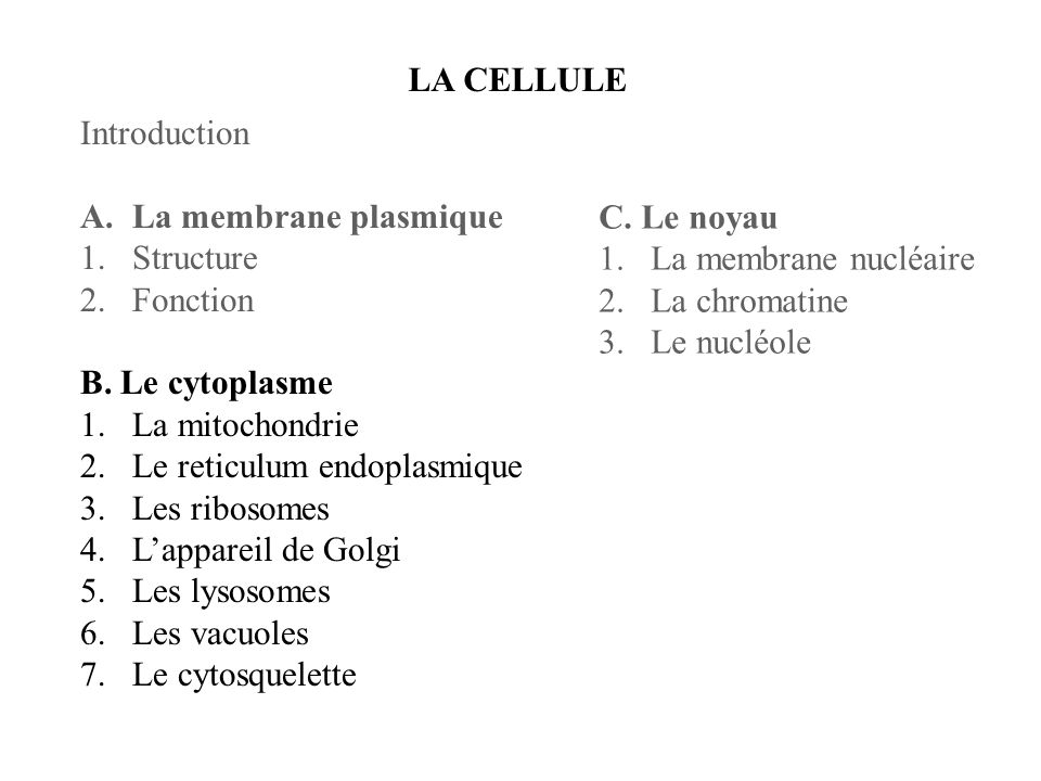 LA CELLULE Introduction. La membrane plasmique. Structure. Fonction. B. Le cytoplasme. La mitochondrie.