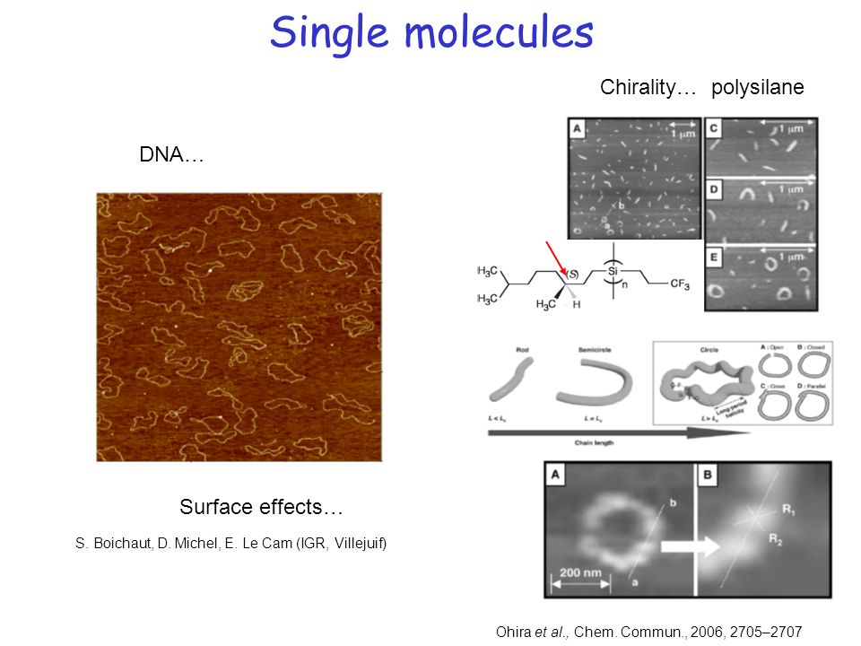 Single molecules Chirality… polysilane DNA… Surface effects…