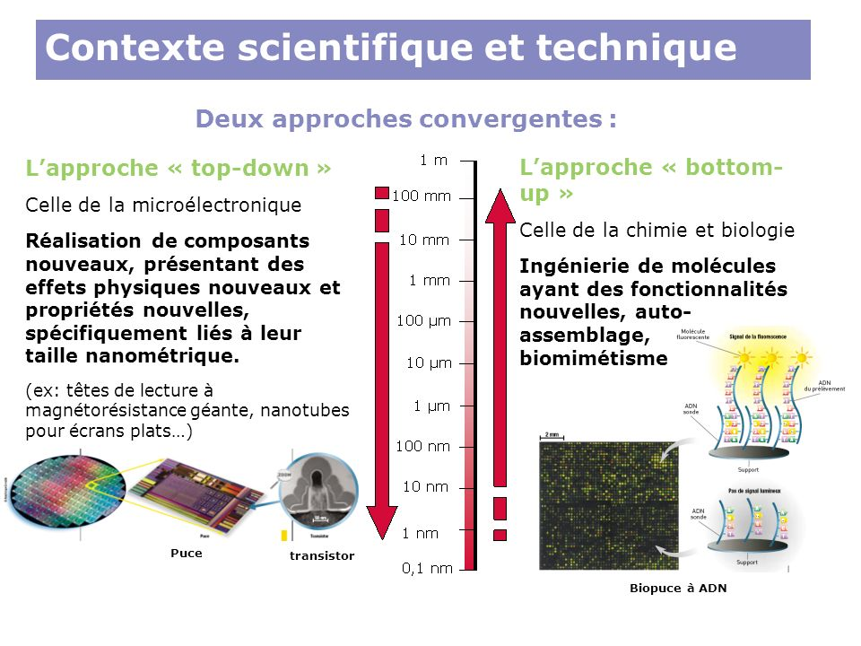 Contexte scientifique et technique