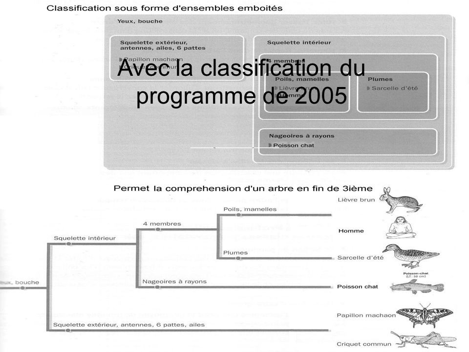 Avec la classification du programme de 2005