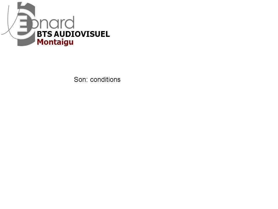 BTS AUDIOVISUEL Montaigu Son: conditions