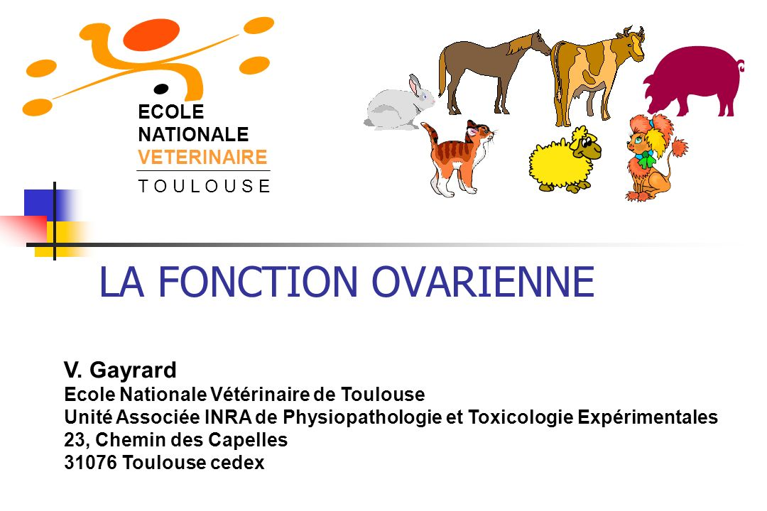 LA FONCTION OVARIENNE V. Gayrard ECOLE NATIONALE VETERINAIRE