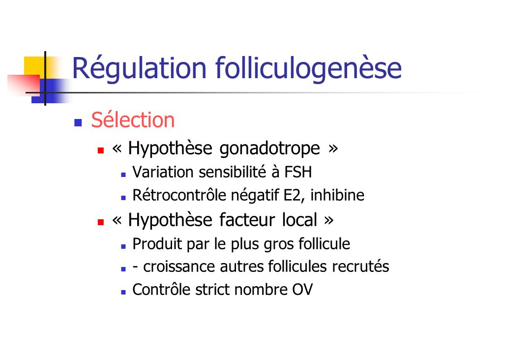 Régulation folliculogenèse