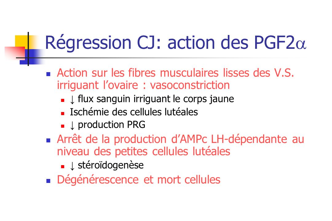 Régression CJ: action des PGF2