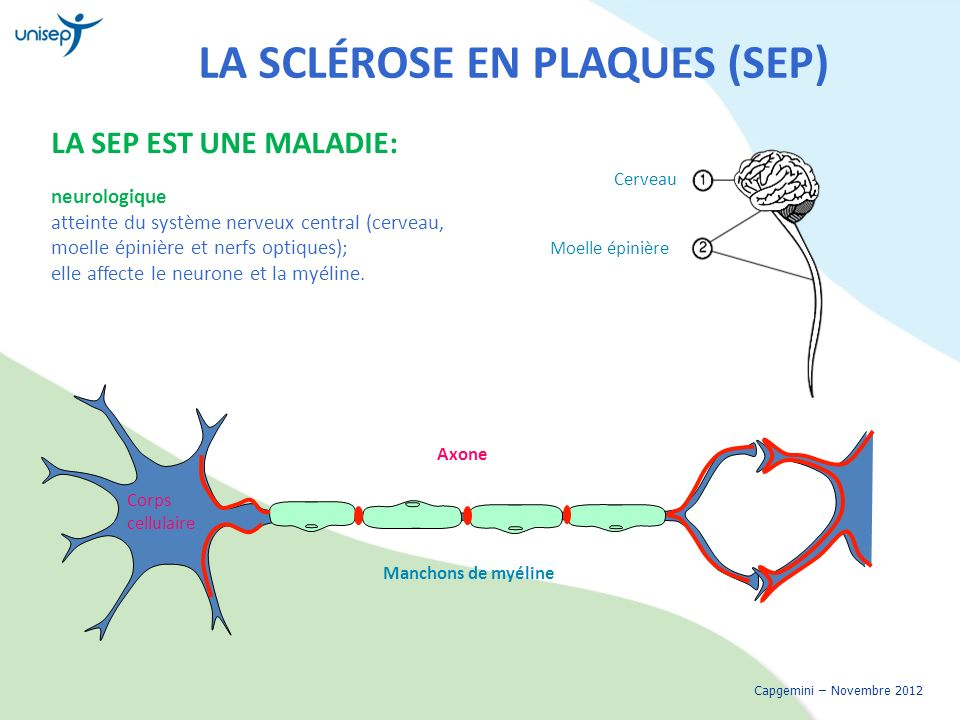 maladie a caractere physique ssq pdf