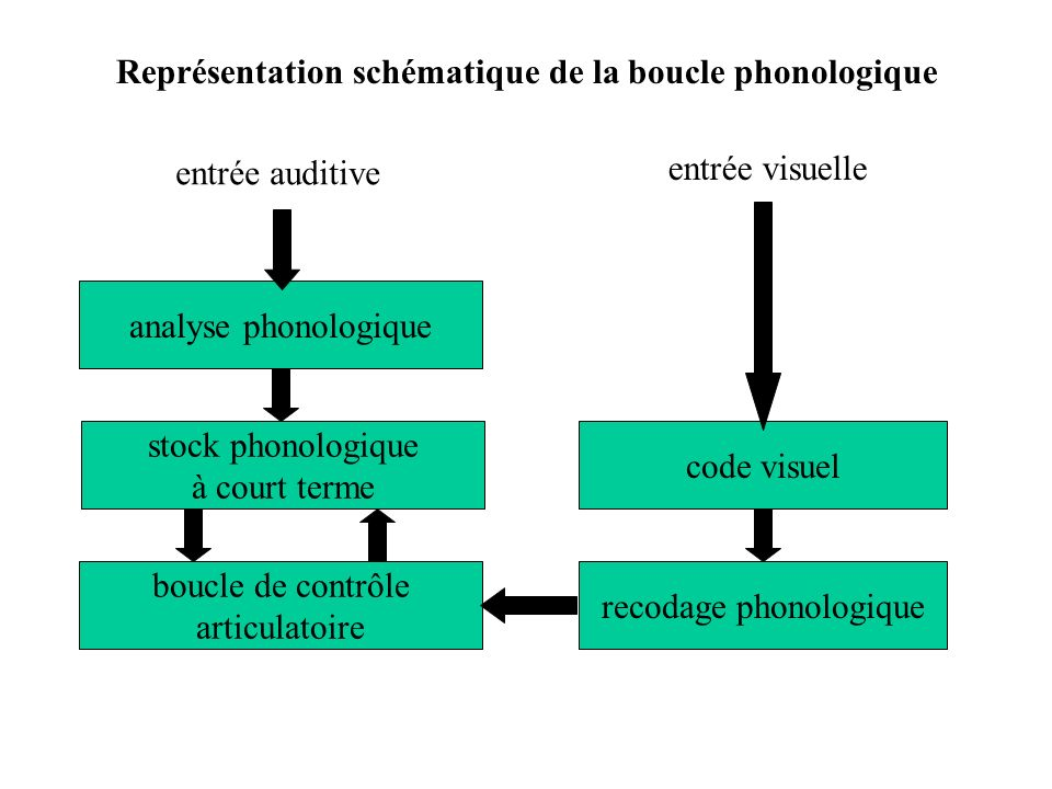 recodage phonologique
