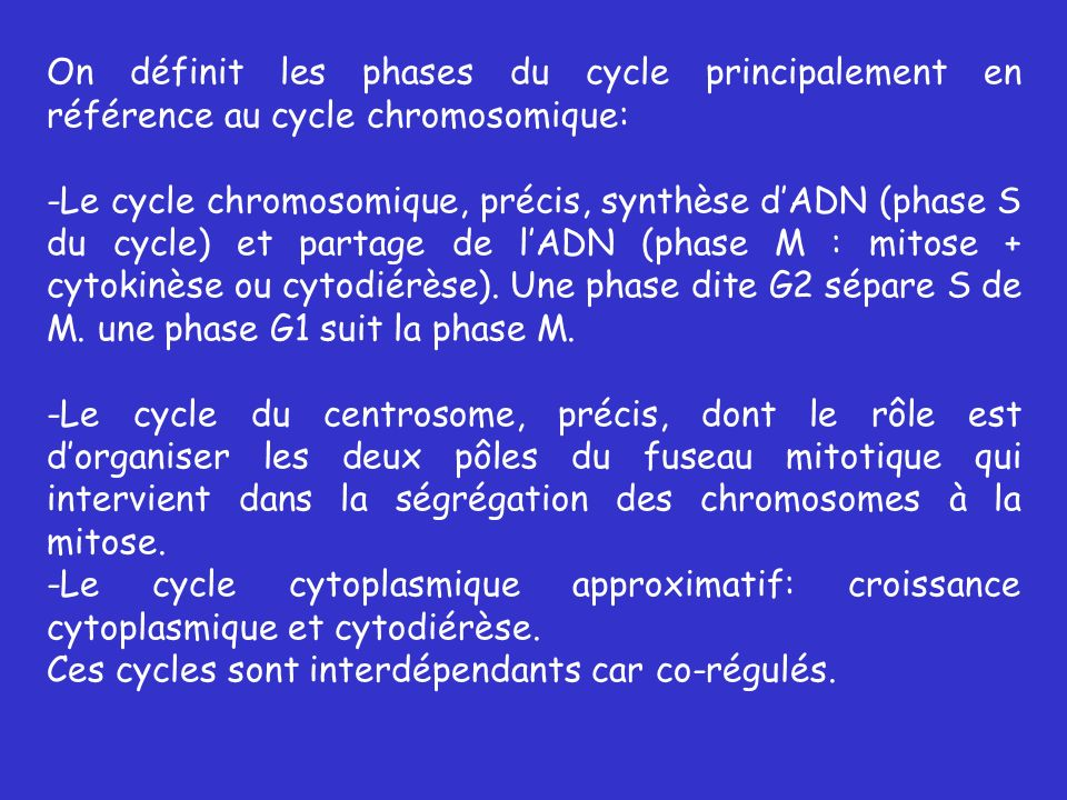 On définit les phases du cycle principalement en référence au cycle chromosomique: