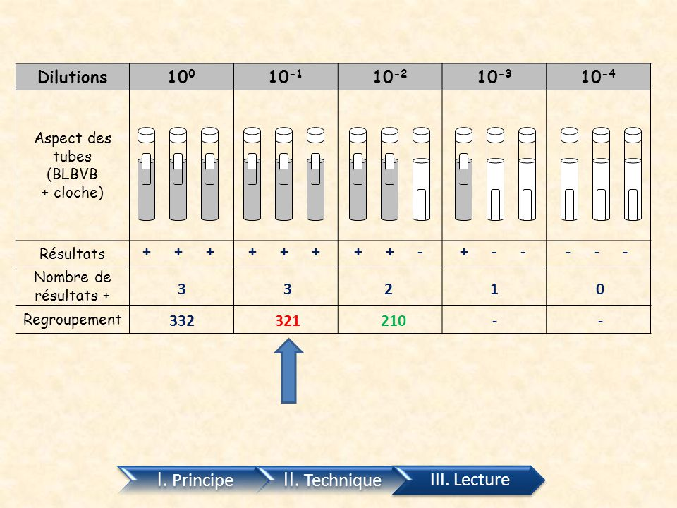 II. Technique I. Principe III. Lecture Dilutions 100 10-1 10-2 10-3