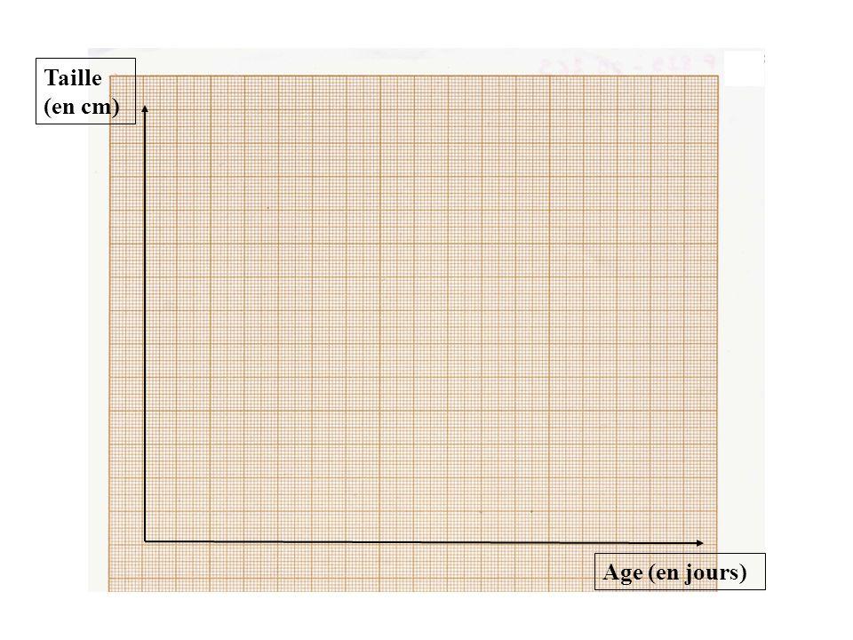 Construire Un Graphique Sur Une Feuille De Papier Millimétré