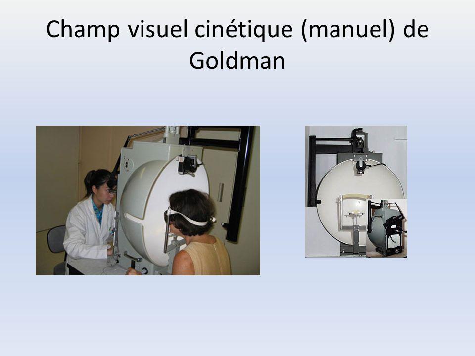 les voies visuelles les anomalies du champ visuel