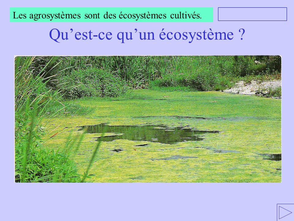 Nourrir Lhumanité Agriculture Santé Environnement Ppt