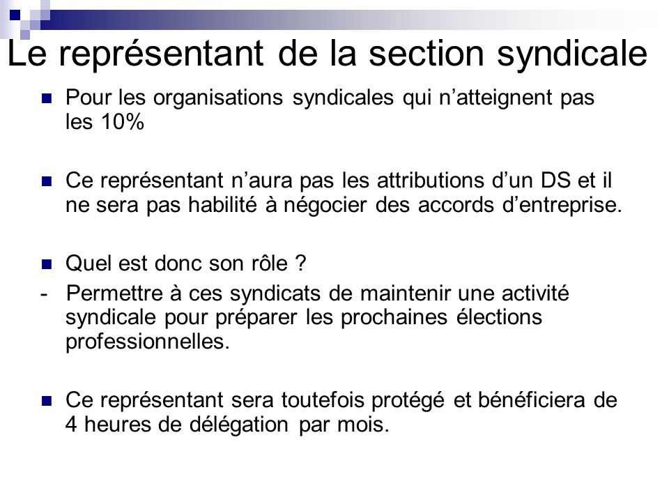 Representant De Section Syndicale Sicilfly