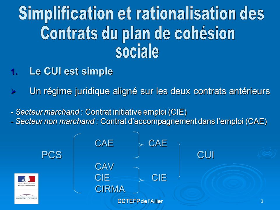 Le Contrat Unique D Insertion Ppt Video Online Telecharger