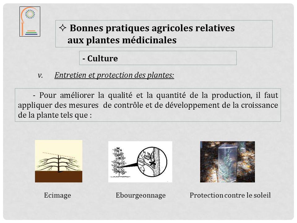 bonne pratique agricole pour les plantes aromatiques et m dicinales ppt t l charger. Black Bedroom Furniture Sets. Home Design Ideas