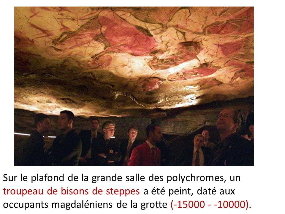 grotte altamira visite