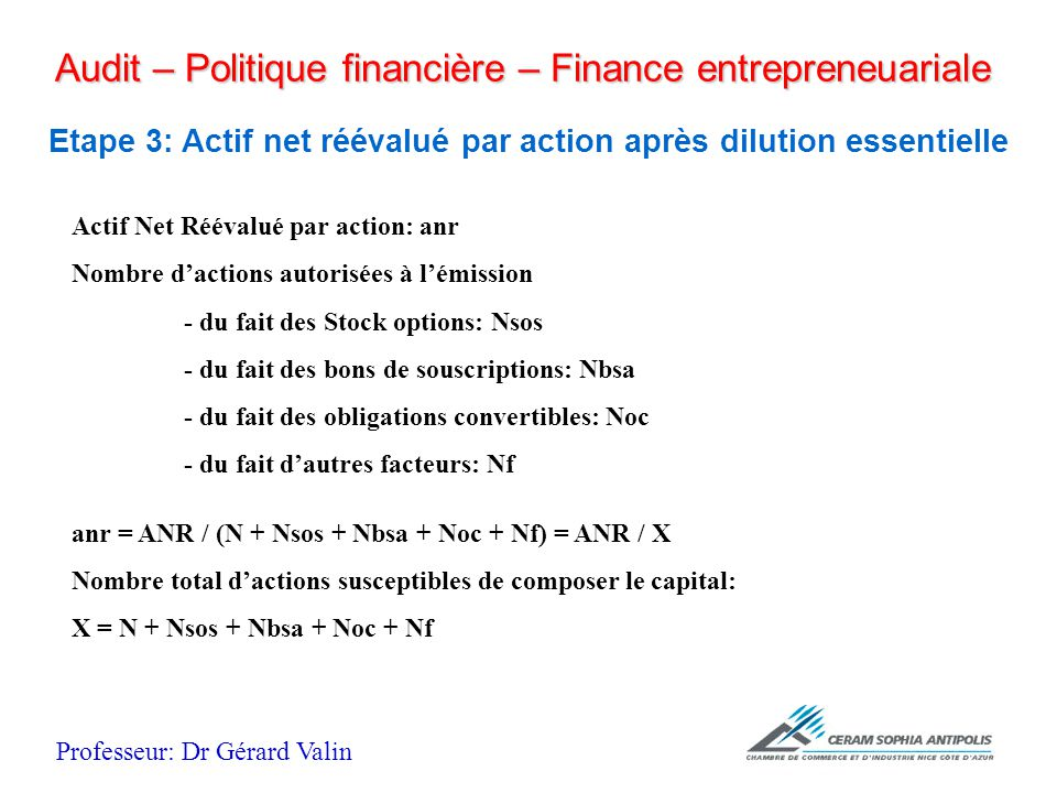 audit politique financi re finance entrepreneuriale. Black Bedroom Furniture Sets. Home Design Ideas