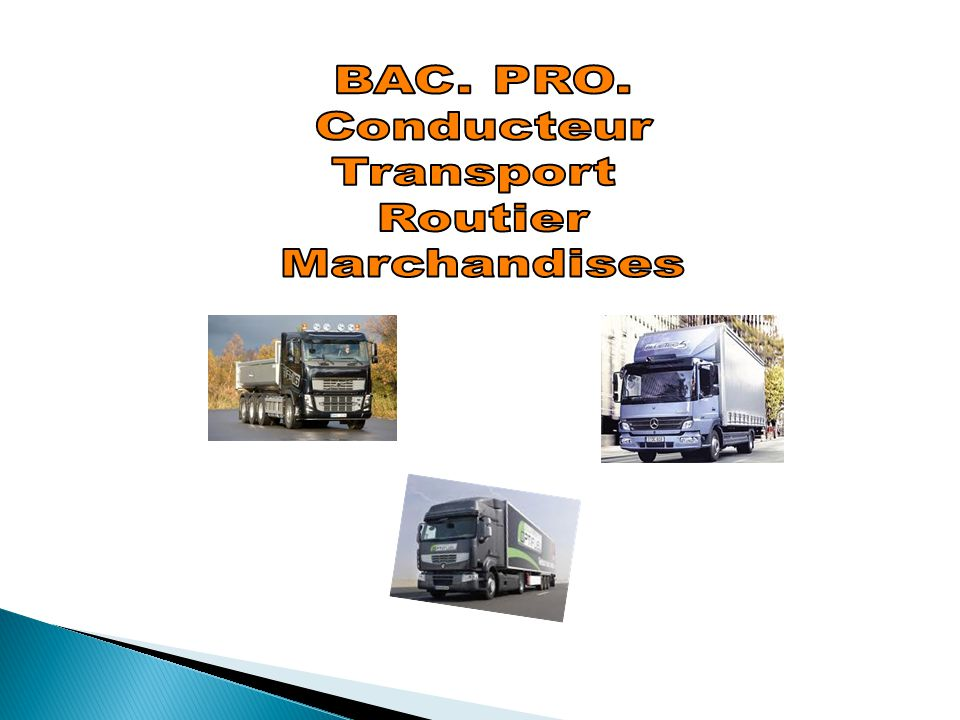 BAC. PRO. Conducteur Transport Routier Marchandises