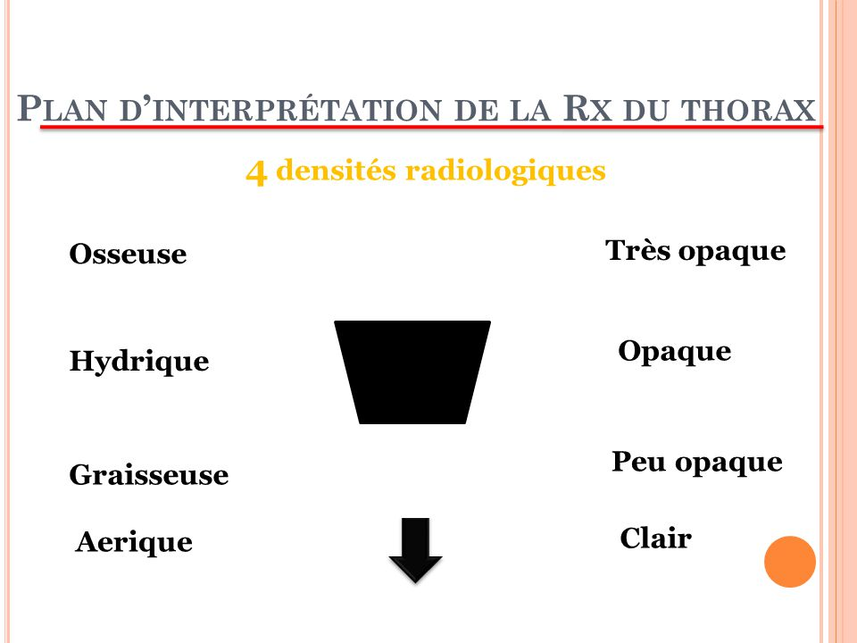 Plan d'interprétation de la Rx du thorax