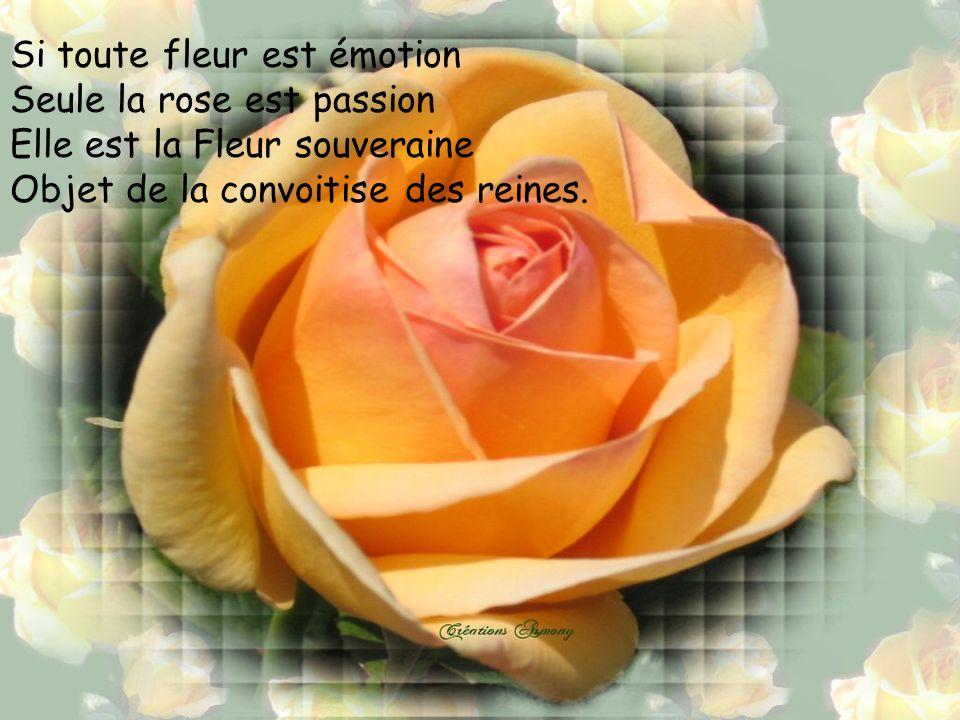 si toute fleur est émotion - ppt télécharger