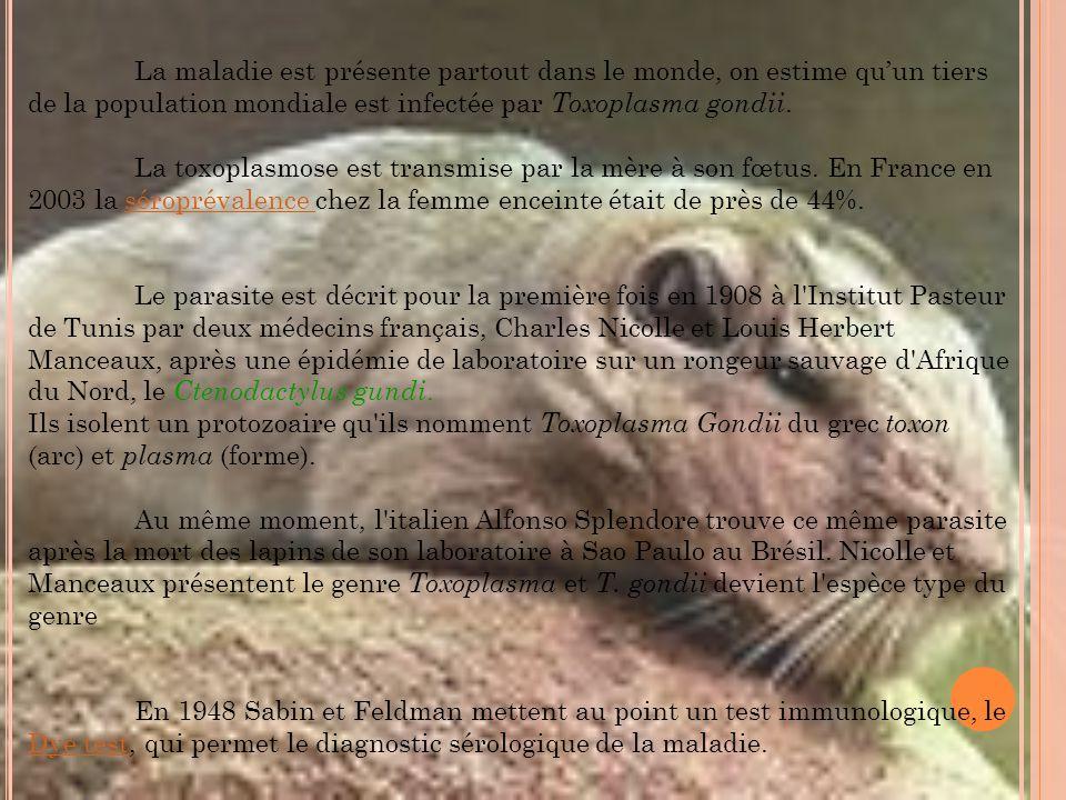 LA TOXOPLASMOSE Fait par: Jennifer et Elodie. - ppt video online ...