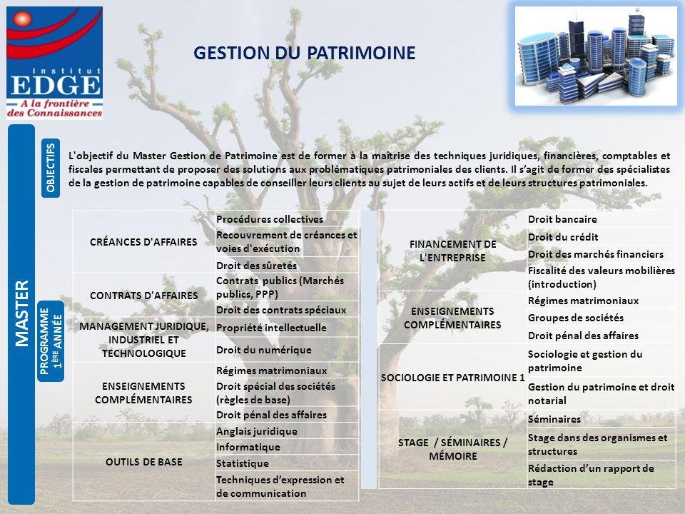 Gestion Du Patrimoine Master Objectifs Ppt Telecharger