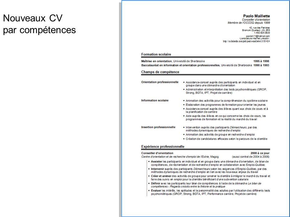 cv conseill u00e8re en insertion professionnelle