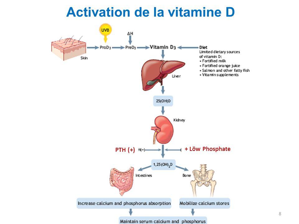 equilibre vitamine d