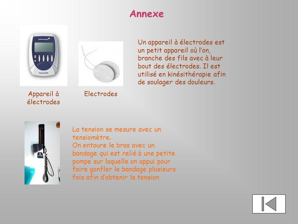 Exemple conclusion rapport de stage kine