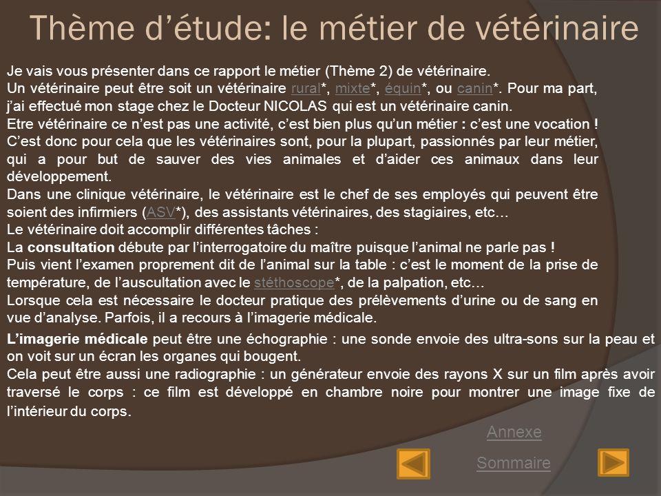 Rapport De Stage Cabinet Du Docteur Nicolas Veterinaire Ppt