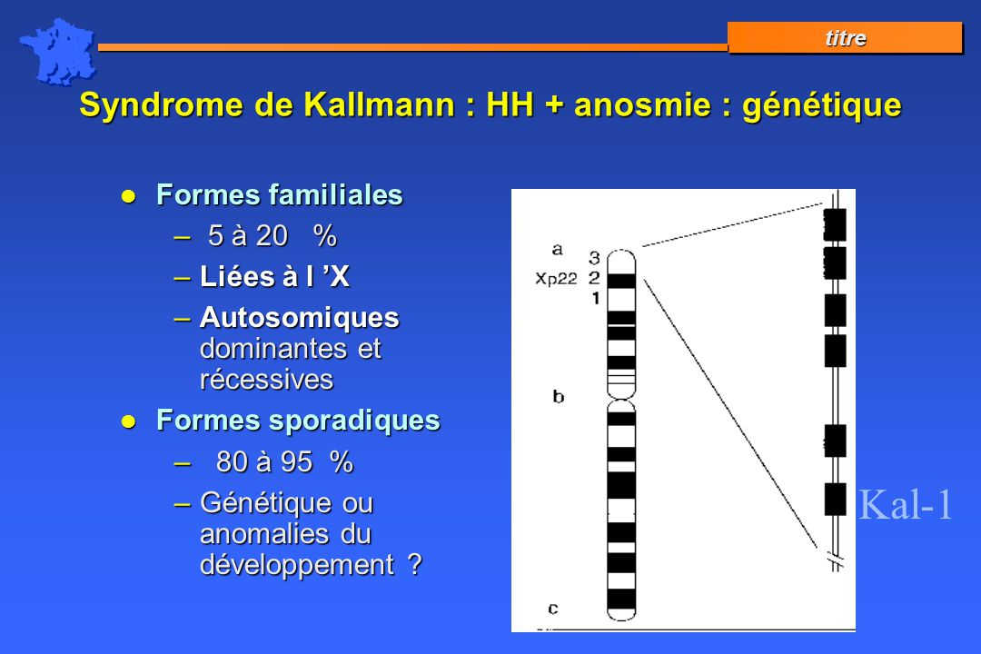 Syndrome de Kallmann : HH + anosmie : génétique