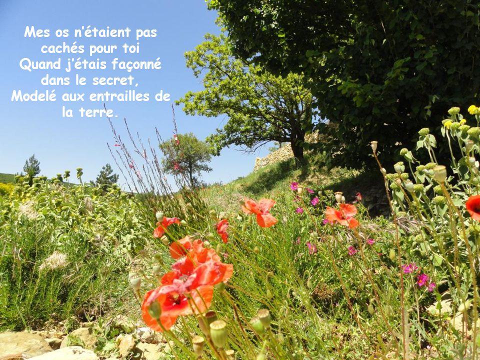 Dieu me connaît Psaume 138,1-18 / Cliquer!. - ppt télécharger