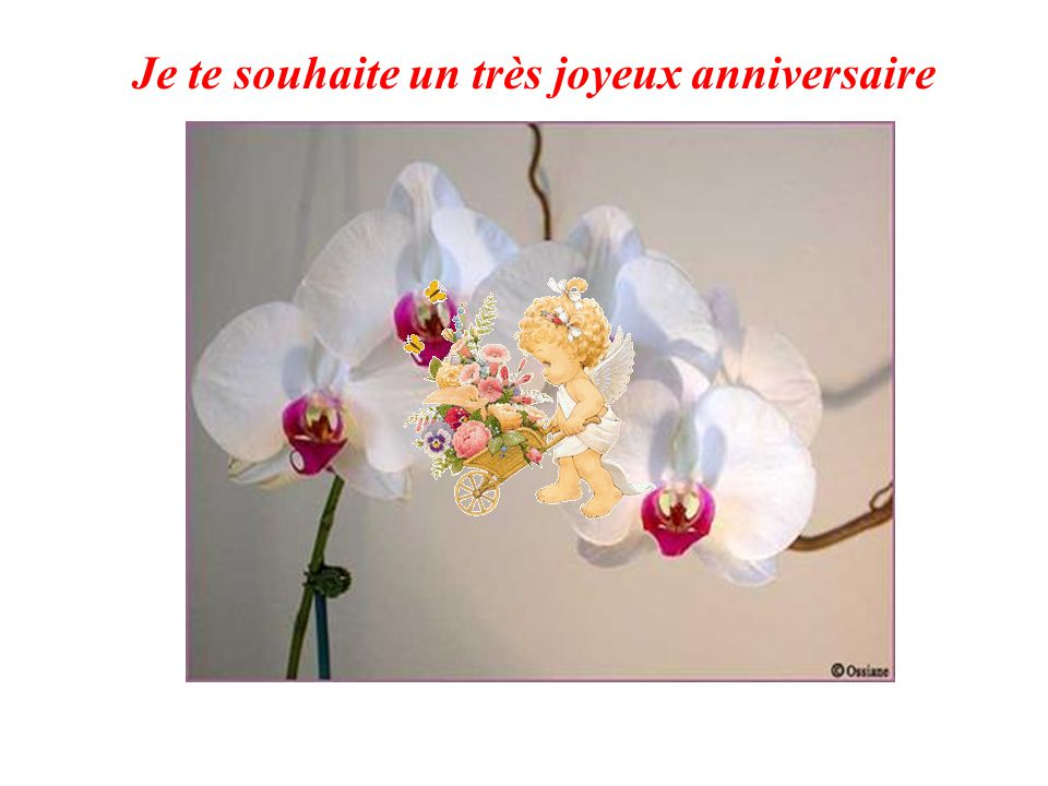 Joyeux Anniversaire Ppt Video Online Telecharger