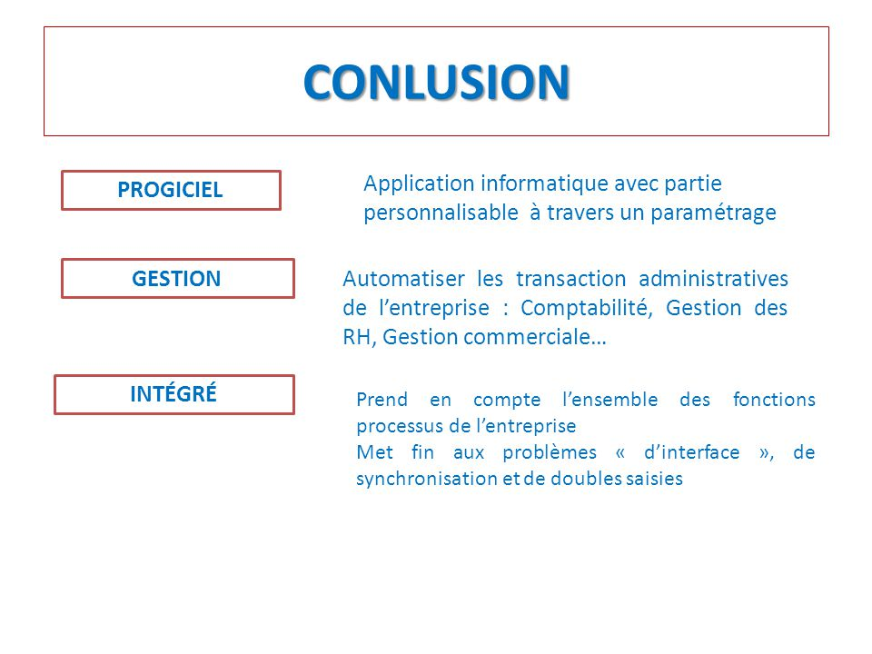 CONLUSION Application informatique avec partie personnalisable à travers un paramétrage. PROGICIEL.
