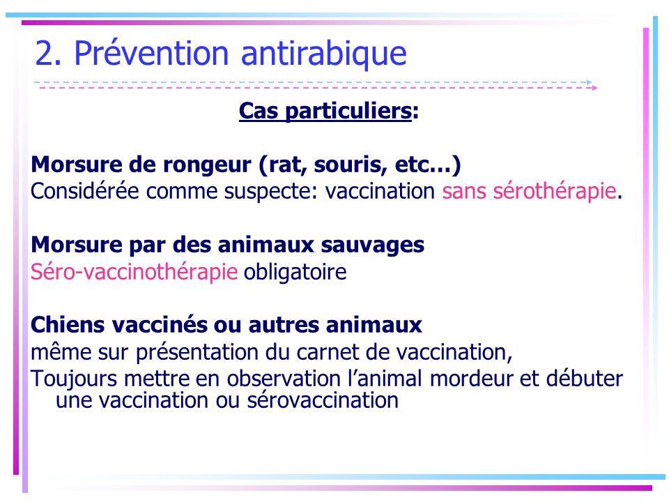 chiens vaccination obligatoire