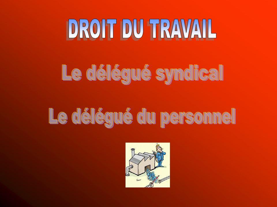 fccd2402a12 Droits Du Délégué Du Personnel — Sicilfly