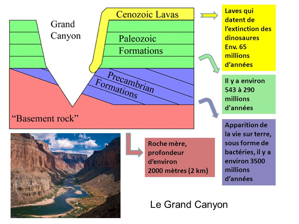 Le Grand Canyon Laves qui datent de l'extinction des dinosaures