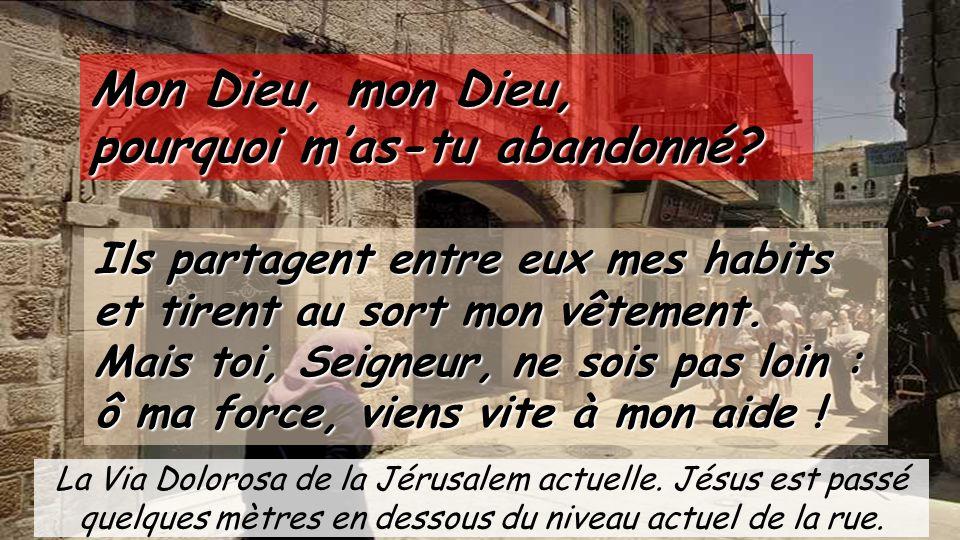 Dimanche des Rameaux et de la Passion le 29 mars ppt télécharger