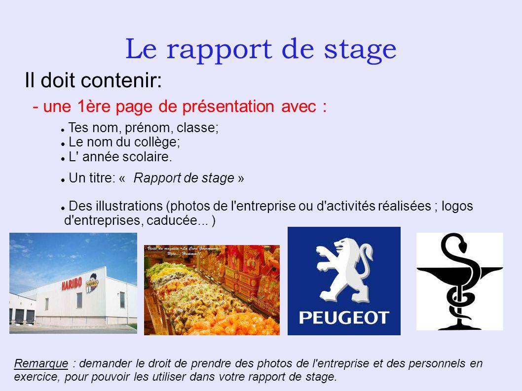 Le Rapport De Stage Il Doit Contenir