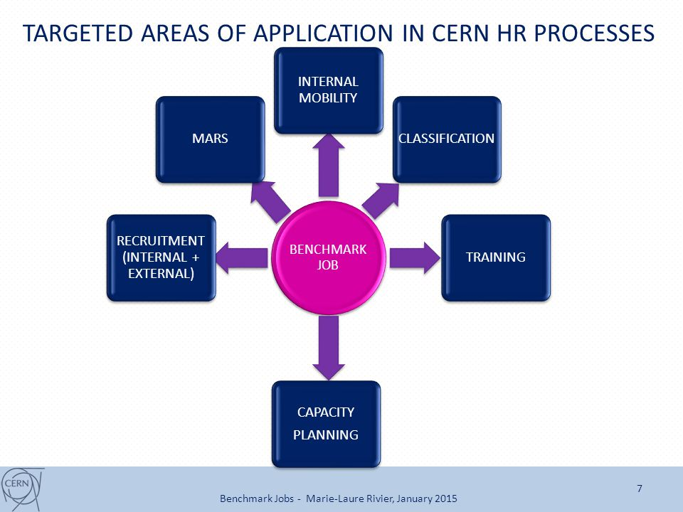 TARGETED AREAS OF APPLICATION IN CERN HR PROCESSES