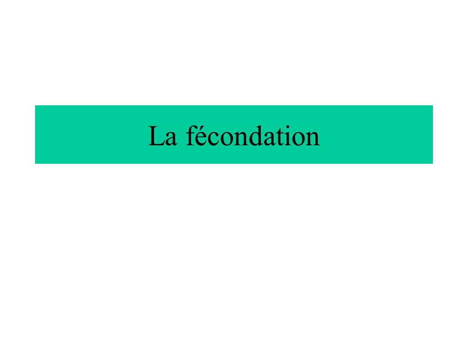 La fécondation