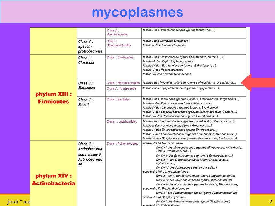 Mycoplasmes : Symptômes et traitements | Cerballiance