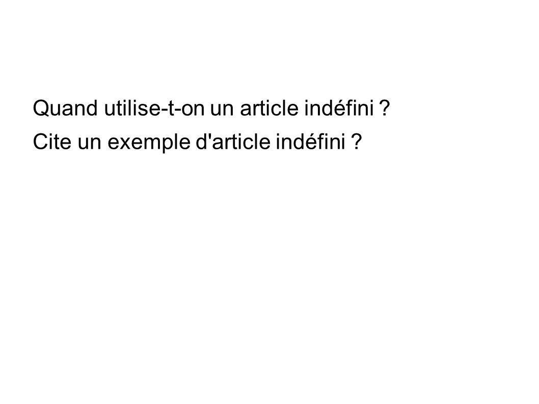 Quand utilise-t-on un article indéfini