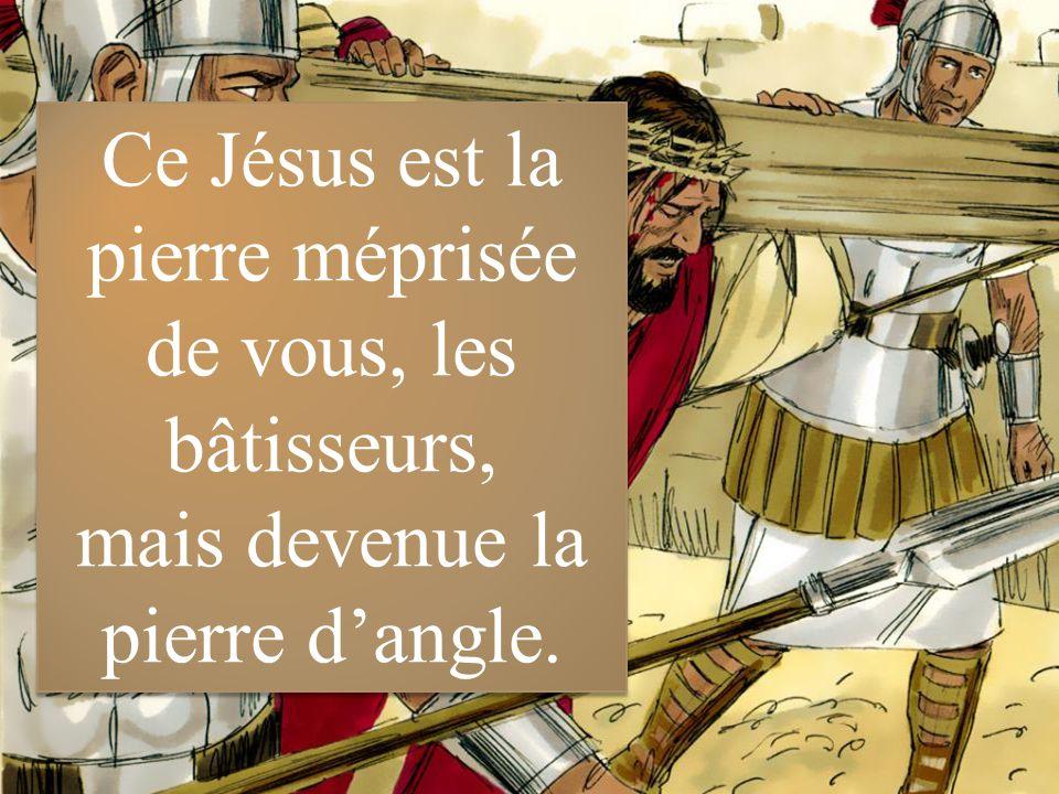 4ème dimanche de Pâques Année B Dimanche 26 avril ppt video online  télécharger