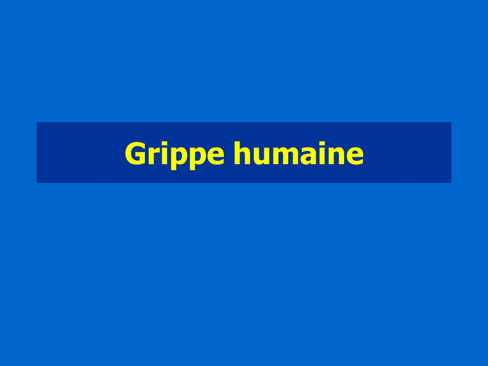 Grippe humaine