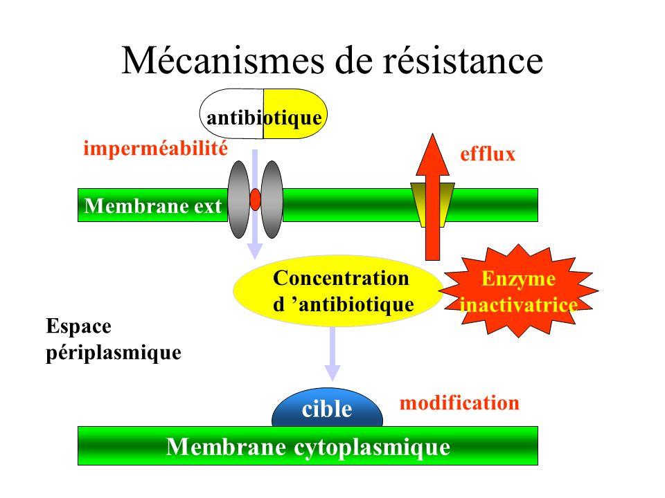 Dr Christophe BURUCOA Laboratoire de Microbiologie A CHU Poitiers - ppt  video online télécharger